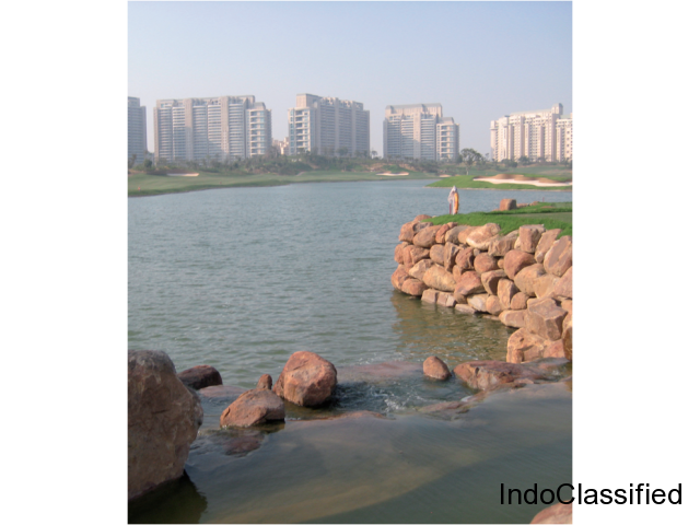 Experience Luxury Living At The DLF Camellias