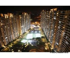 Buy Ace City Super Luxury 3 BHK Flat @ Rs 3290 PSF, Gr. Noida West : 9250-677-000