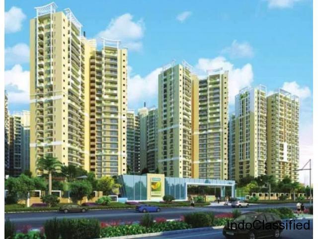 Ajnara Prime Tower Noida Extension Apartments @9250001807