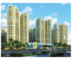 Ajnara Prime Tower Noida Extension Apartments @9250001807