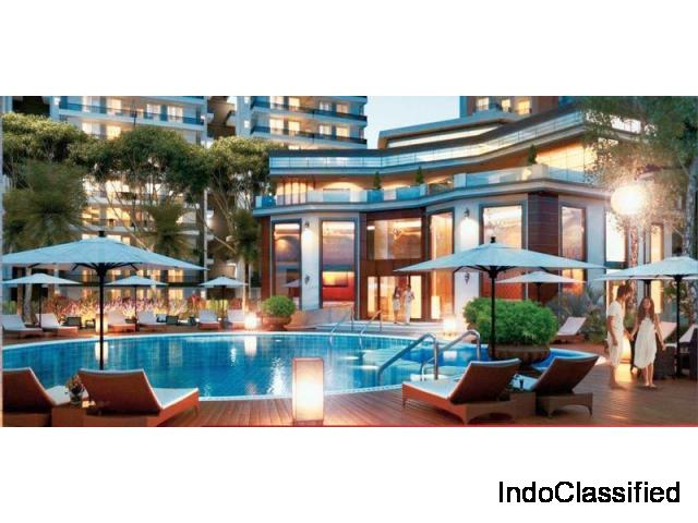 Pay 10% to Buy Ace City 2 BHK Luxury Flat Price @ Rs. 3290 PSF: 9250-677-000