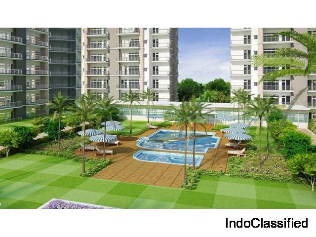 Buy 2 BHK - 1050 Sq.ft @ Rs.2999 PSF at Ace Platinum, Greater Noida : 9250-477-000
