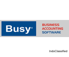 digisoft IT company web services busy accounting software