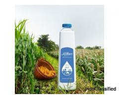 Cow Milk in Ghodasar | Milkmor Ahmedabad