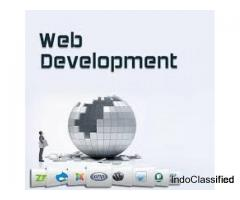 Professional web development company