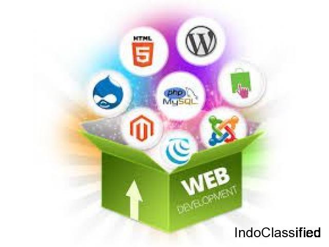 Professional web development company