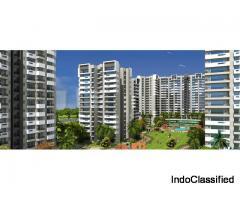 Exotica Fresco Sec 137 Noida @9711836846 Ready to Move Flats