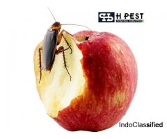 commercial pest control services in hyderabad