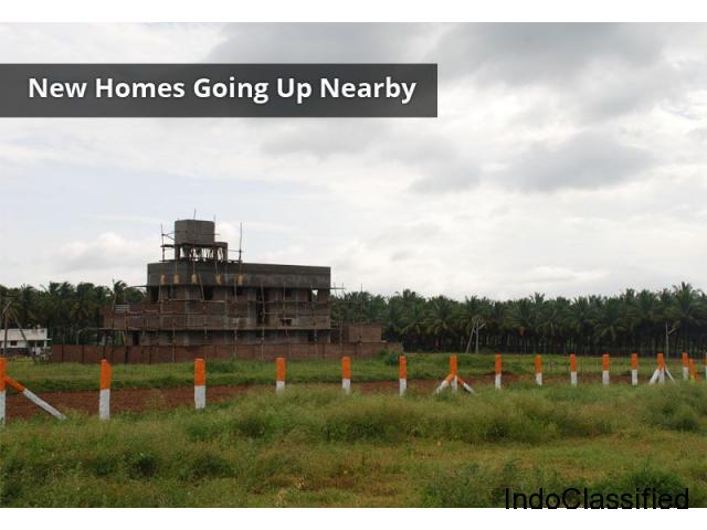 Residential plots for sale in Pollachi – Orange residency