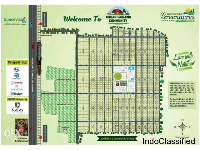 SpaceVision Green Acres in Jadcherla, Hyderabad | Buy, Sale Plot