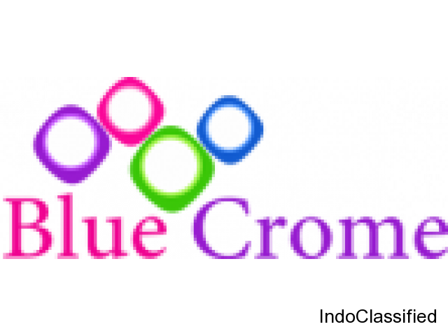 Join Blue crome software solutions in Vashi