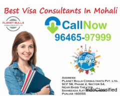 Best Visa Consultants In Punjab