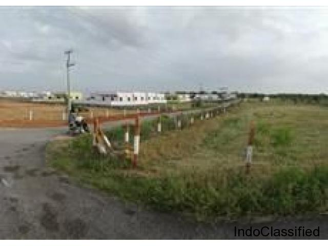 Buy open plots near to the announced AIMS project in Bhuvanagiri