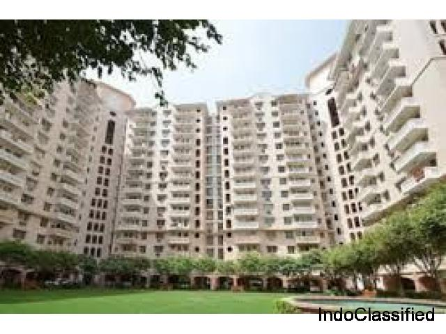 Rent 3 BHK at Golf Course Ext. @ 30000