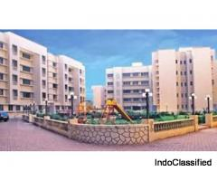 RENT - SELL FLATS OR SHOPS IN NALASOPARA WITH LOW BUDGET!!!