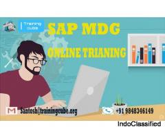 FREE ONLINE DEMO ON SAP MDG