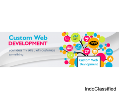Customize Web Development
