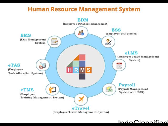 HR Management System & Payroll Software Online