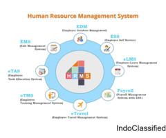 HR Management System & Payroll Software Online