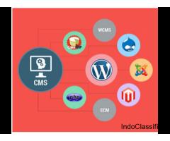 website development in noida