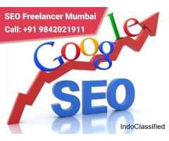 Best SEO Freelancer in Mumbai | 9842021911