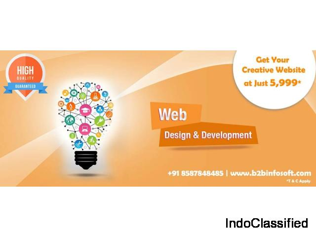 Website Design Company in Delhi, Website Designing in India
