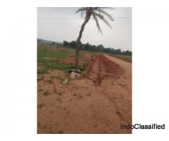Stunning residential plot near the international airport in a low budget-Ambience