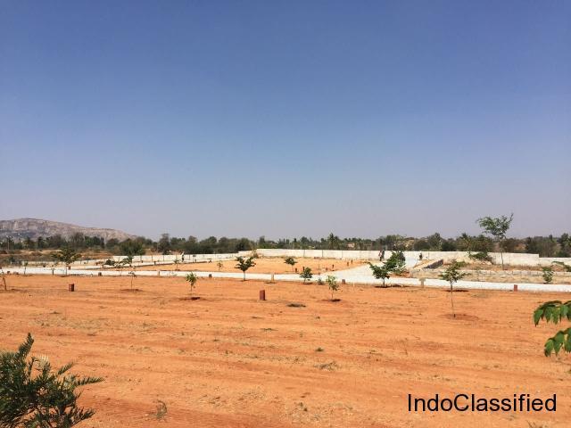 mashri rock garden