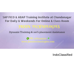 SAP FICO & ABAP training institute at chandanagar