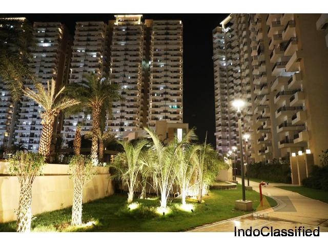 Navratri Offer Best Price Ace City 2 BHK Flat @ Rs 3290 PSF Noida extension : 9250-677-000