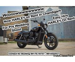 Harley On Rent in Chandigarh