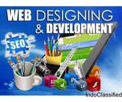 Web Application Development Services in Delhi