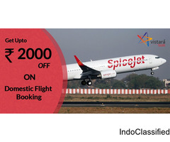 Domestic Flight Booking Offers