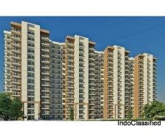 Zara Rossa Sector 112 Gurgaon 9266055508