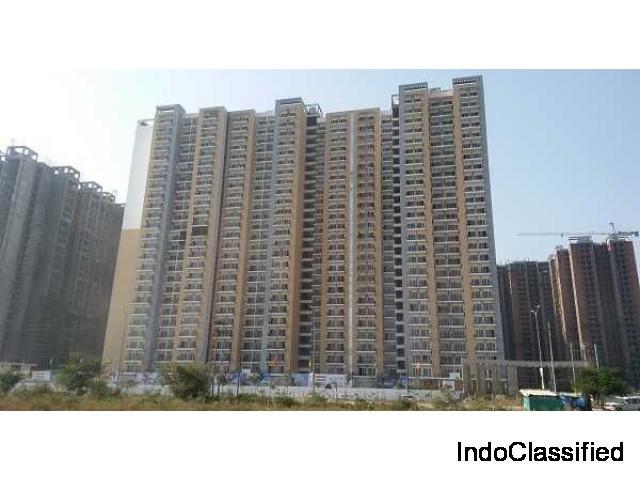 Best Price 2 BHK (915 sq.ft) Flat @ Panchsheel Greens 2, Gr. Noida West : 8744-077-088
