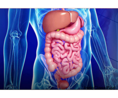 Gastroenterology Treatment in Kolkata