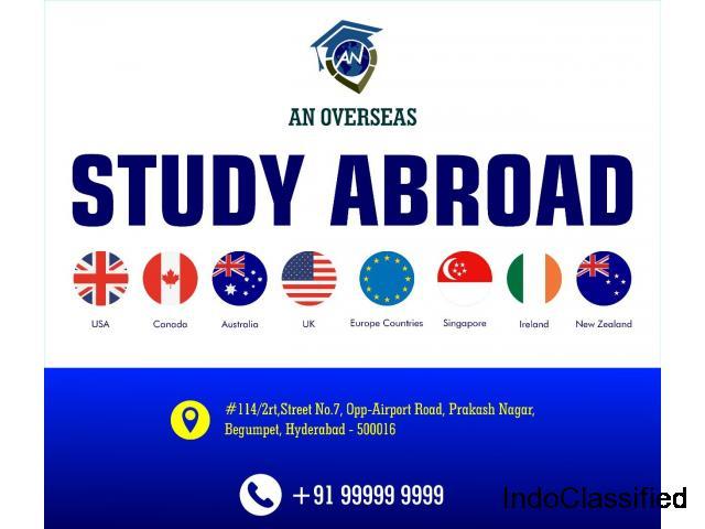Overseas education consultancy