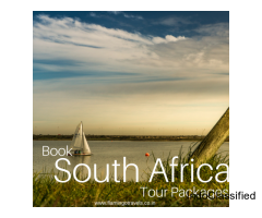 Explore Flamingo's Exciting South Africa Tour Packages