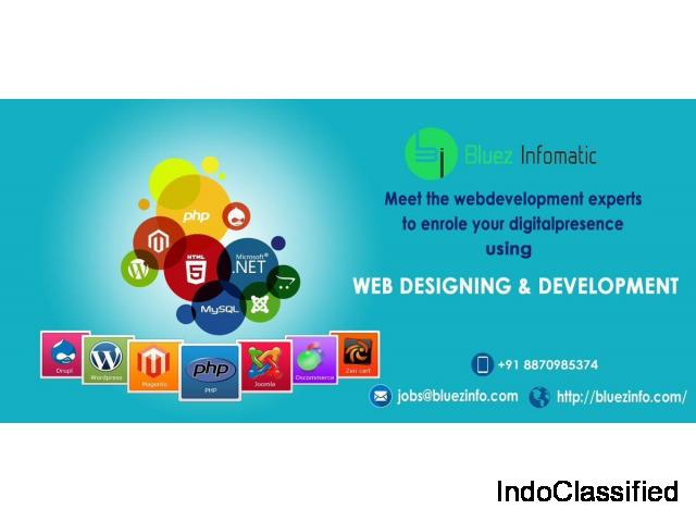 Bluezinfomatic is a leading software Developer in Tirupur
