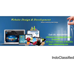 Web Designing & Web development training in Zirakpur