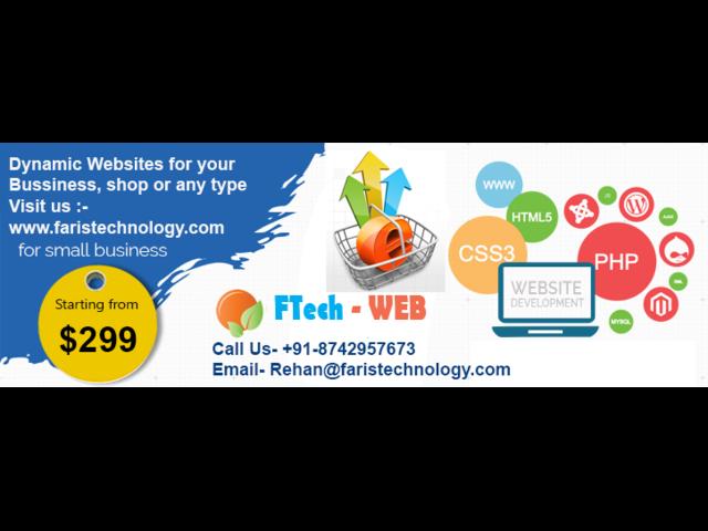 Professional Website Designing & Development