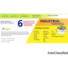 6 months/weeks industrial training in Bareilly and Chandigarh
