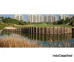 DLF Camellias Apartments & Homes For Sale