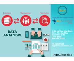 Best Data Analytics Training Course Provider Institute in Delhi - SLA Consultants India