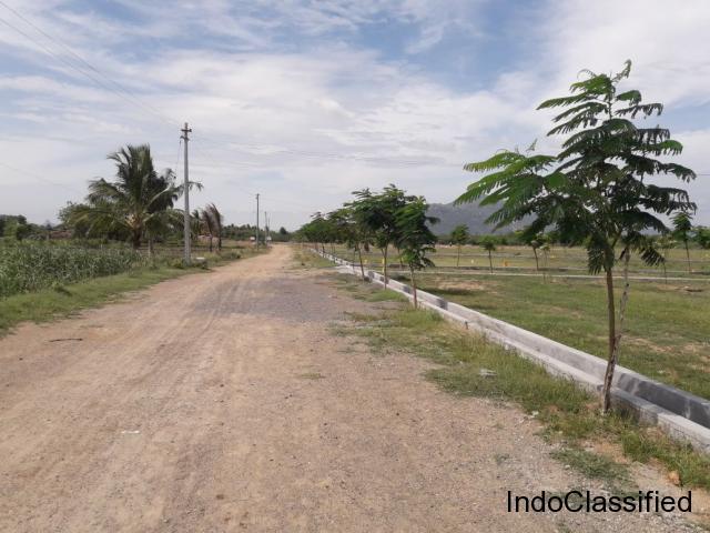 Annai Terasa Nagar Phase -1