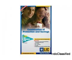 LIC Endowment Plan - Short Term Investment Plan 8132108000