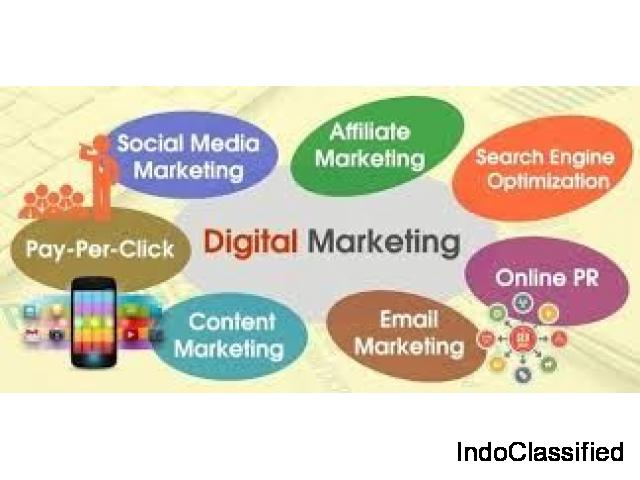 Digital Marketing in Chandigarh and Mohali