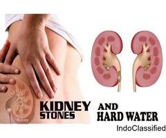 Kidney Stone Treatment in Delhi