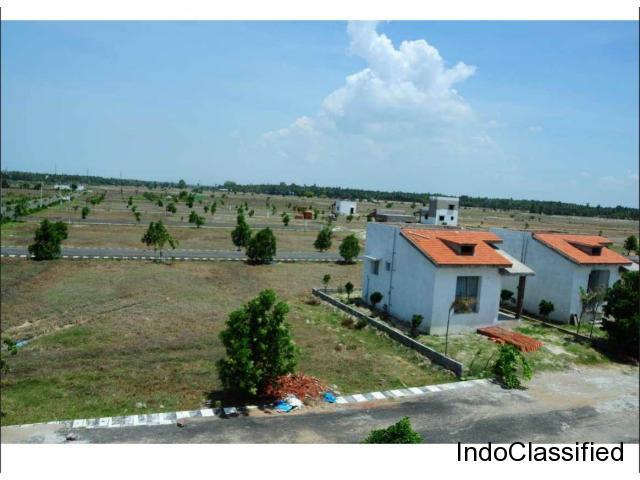 Residential plots for sale in Pondicherry ECR Ct: 90069 90069