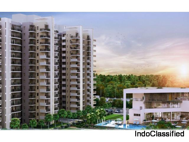 High End Luxury Apartments In Gurgaon For Sale